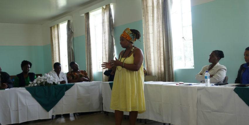 Mental health training at Ingutsheni